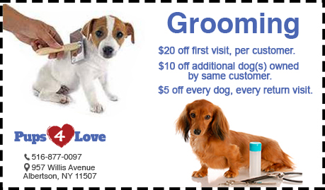 Pups 4 Love Grooming Coupon