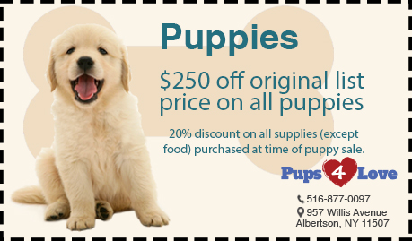 Pups 4 Love Coupon Puppies