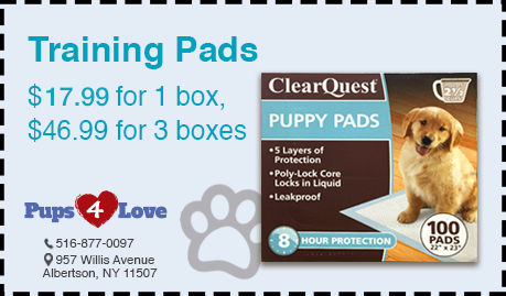 Pups 4 Love Training Pads Coupon